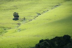 Maloti Road. In South Africa - Eastern Cape Royalty Free Stock Photos