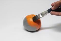 Malować na monochromatycznej owocowej pomarańcze z farby muśnięciem odizolowywa Zdjęcie Stock