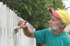 Malować podmiejskiego ogrodzenie Zdjęcia Stock