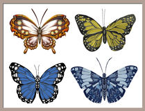 Malować z motylami na białym tle Obrazy Royalty Free
