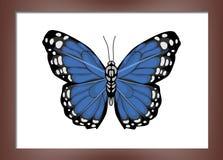 Malować z motylami Zdjęcia Royalty Free