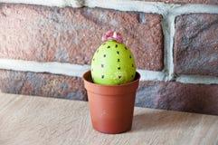 malowane jajka DIY i handmade Wiosen rozsady charcica Kaktusowy kwitnienie Szczęśliwy Wielkanocny wakacje Naturalny barwidło Jaje zdjęcia royalty free