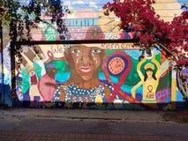 Malowidła ścienne W misja okręgu, San Fransisco zdjęcia stock