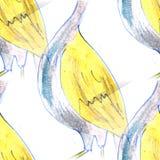 Malowidła ściennego tła bezszwowa deseniowa bocianowa tekstura Fotografia Royalty Free