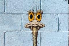 Malowidło ścienne emu na ścianie w Błyskawicowej grani obraz royalty free