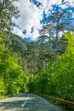 Malownicza droga przechodzi przez jarów i gór Obrazy Royalty Free