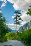 Malownicza droga przechodzi przez jarów i gór Obraz Stock
