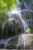 Malownicza siklawa otaczająca zielonym lasem Zdjęcia Stock