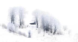 Malownicza zimy scena Obrazy Royalty Free
