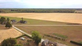 Malowniczy dom wiejski i stajnia po środku pszenicznego pola zbiory wideo