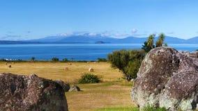 Malowniczy Jeziorny Taupo, Nowa Zelandia Zdjęcia Royalty Free