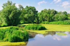 Malowniczy jezioro Zdjęcia Royalty Free