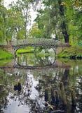 Malowniczy krajobraz z starym mostem nad przepływem w parku w G Zdjęcie Stock