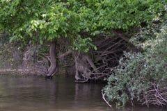 Malowniczy miejsca na Jianu ręki kanale 2 obraz royalty free