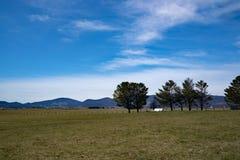 Malowniczy Rolny †'Tuszuje ogród, Virginia, usa Fotografia Stock