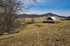 Malowniczy Rolny †'Tuszuje ogród, Virginia, usa Zdjęcia Stock
