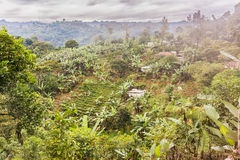 Malowniczy wiejski krajobraz w średniogórzach Gwatemala Obraz Royalty Free