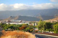 Malowniczy znakomity krajobraz piękni kurortów lasy Americas na Tenerife, wyspy kanaryjska, Spain obrazy royalty free
