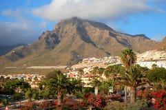 Malowniczy znakomity krajobraz piękni kurortów lasy Americas na Tenerife, wyspy kanaryjska, Spain obrazy stock