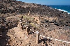 Malpais de Guimar,荒地火山的风景在特内里费岛,加那利群岛,西班牙 库存照片