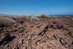 Malpais de Guimar, ландшафт неплодородных почв вулканический в Тенерифе, Cana стоковая фотография