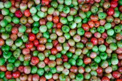 Malpighia glabra red acerola fruits. At local market in Mekong Delta, Vietnam Royalty Free Stock Photo