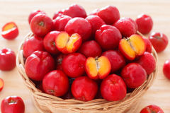 Malpighia glabra - red acerola, tropical fruit-bearing shrub in Royalty Free Stock Image