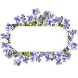Malplaatje met de bloemen van de waterverftekening Stock Afbeelding