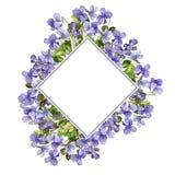 Malplaatje met de bloemen van de waterverftekening Royalty-vrije Stock Foto