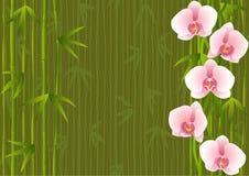 Malplaatje met het bamboe van het orchideeëneind Stock Afbeelding