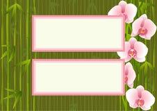 Malplaatje met het bamboe van het orchideeëneind Royalty-vrije Stock Afbeeldingen