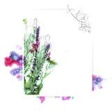 Malplaatje voor uitnodigingsontwerp met waterverfplons en verse bloem en inktcontour Stock Foto's