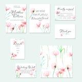 Malplaatjekaarten met bloem die van de waterverf de tedere roze Kosmos worden geplaatst royalty-vrije illustratie