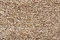Malt as background. Malt an ingredient for beer Stock Image