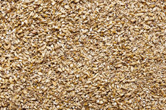 Malt as background. Malt an ingredient for beer Royalty Free Stock Image