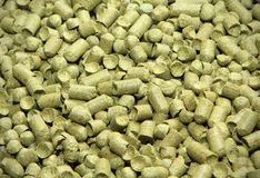 Malt background. Ingredient for beer. Close up stock photos