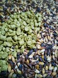 Malt and barley for craft beer manufacturing. On the table royalty free stock photos