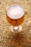Malt and beer Stock Photo