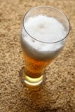 Malt and beer Royalty Free Stock Image