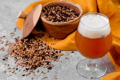 Malt grain and a glass of beer. Mixed varieties of malted grain on a gray background. close-up. Top view. flat lay. series of photos. space royalty free stock image