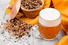 Malt grain and a glass of beer. Mixed varieties of malted grain on a gray background. close-up. Top view. flat lay. series of photos. space royalty free stock images
