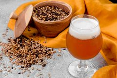 Malt grain and a glass of beer. Mixed varieties of malted grain on a gray background. close-up. Top view. flat lay. series of photos. space stock photos