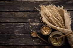 Malt, hop and rye ears. Malt and hop green dried leaves on aged wooden table background, top view royalty free stock photos