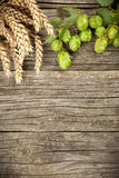 Malt and hops. Beer brewing ingredients Stock Photography