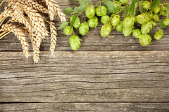 Malt and hops Royalty Free Stock Image