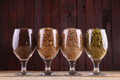 Malt and hops in glasses Royalty Free Stock Images
