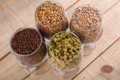 Malt and hops in glasses. Glasses full of malts and hops over a wooden background Royalty Free Stock Image