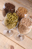 Malt and hops in glasses Stock Photography