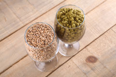 Malt and hops in glasses. Glasses full of malt and hops over a wooden backgound Royalty Free Stock Photo