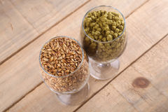 Malt and hops in glasses. Glasses full of malt and hops over a wooden backgound Royalty Free Stock Images